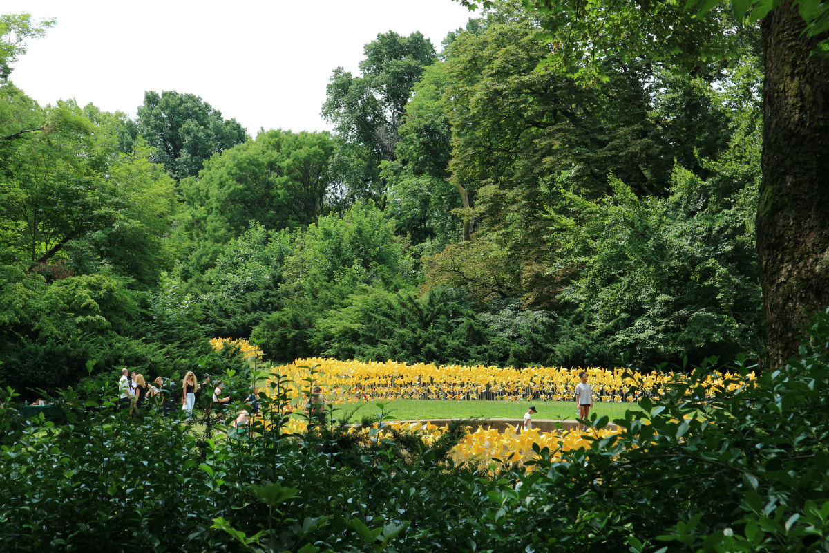 7,000 Pinwheels Bring Life Back To A Forgotten Garden ...